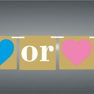 Банер гирлянд Момче или Момиче / Boy or Girl, 10 флагчета, 2,00 м дължина
